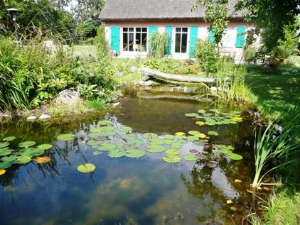Gartendesign gartenplanung galabau gartengestaltung for Was brauchen fische im teich